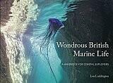 Front cover of Wondrous British Marine Life