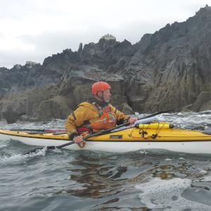 Kayaker paddling near coast