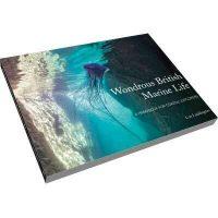 Wondrous British Marine Life